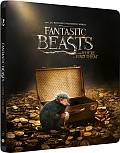 Fantastická zvířata a kde je najít 3D+2D 2x[Blu-ray] - steelbook (Fantastic Beasts and where to find them)