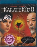 karate_kid2BrP.jpg